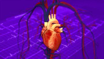 Evaluación de la aptitud cardiovascular física y deportiva.